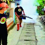 Saat Desa Kertanegara Diserang Chikungunya. Pramuli Kwarcab Purbalingga Bergegas Lakukan Pencegahan
